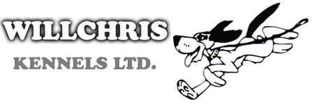 Willchris Kennels | Surrey Dog Boarding Kennel and Canine Daycare Services | White Rock, South Surrey, Langley, Delta